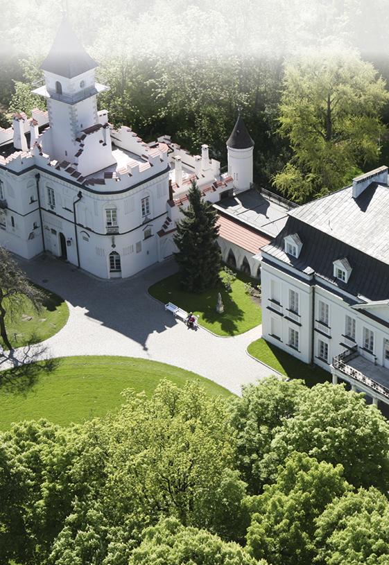 Dom Pracy Twórczej - Pałac w Radziejowicach