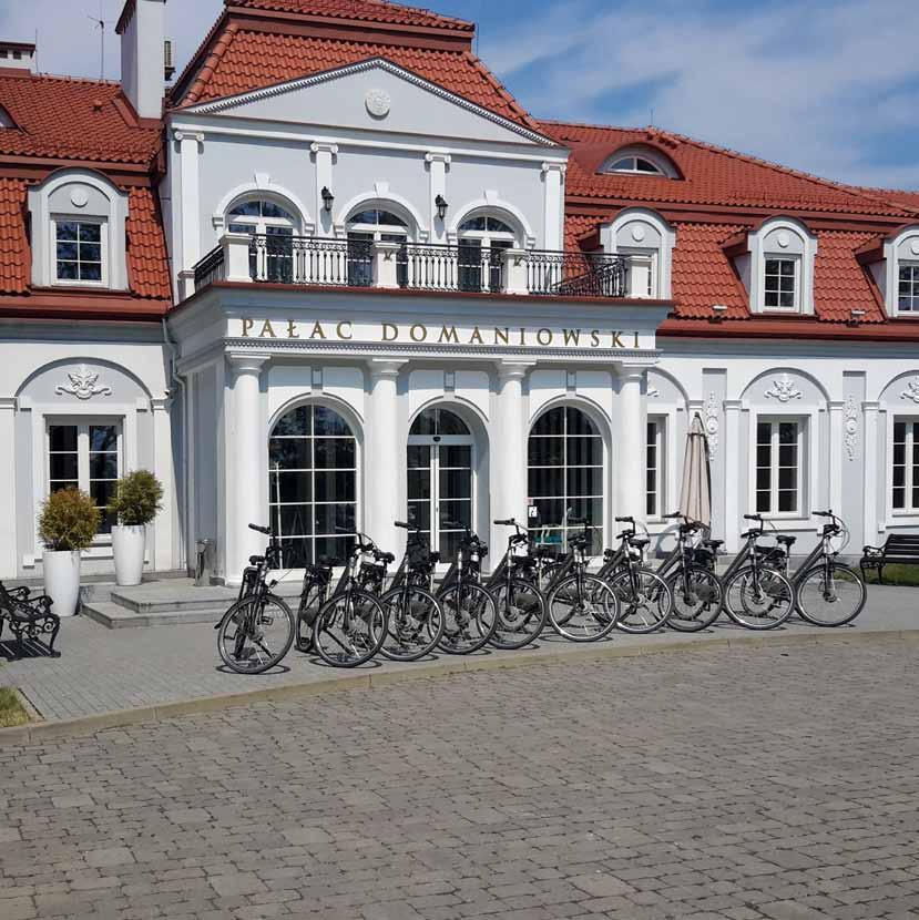 Pałac Domaniewski Resort & Conference